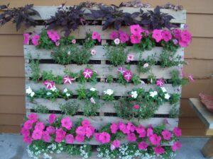 Μετατρέψτε μια παλέτα σε αρωματικό κήπο στο μπαλκόνι σας!!!