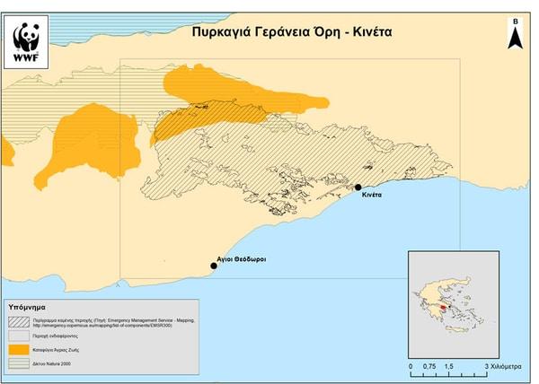 Οι περιβαλλοντικές οργανώσεις για τις πυρκαγιές στην Αττική