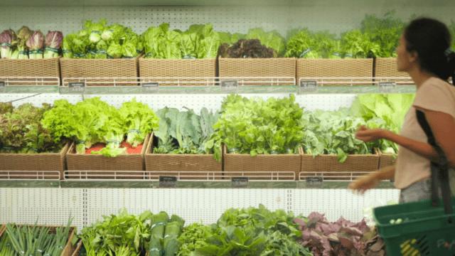 Όλες οι πράσινες σαλάτες. Συνδυάστετις σωστά!