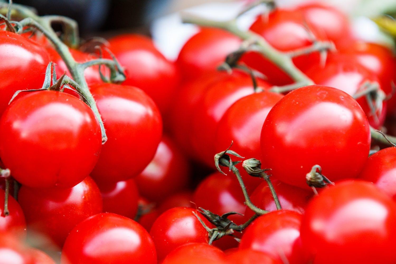 Ντομάτα: ποια χαρακτηριστικά καθορίζουν την καλή ποιότητα