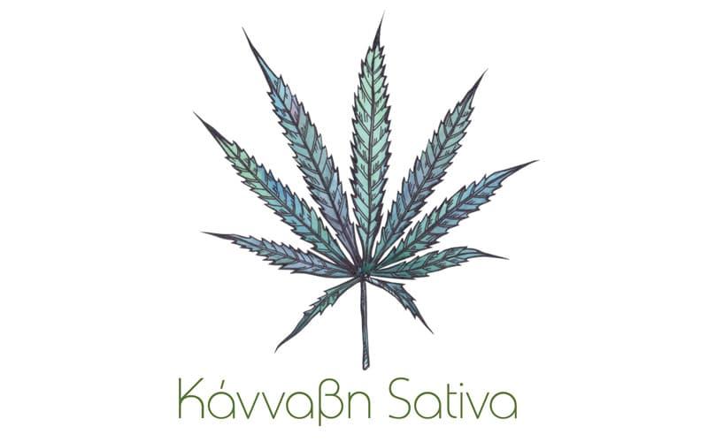 Κάνναβη Sativa. Άκρως ευεργετική για την υγεία-Naturanrg