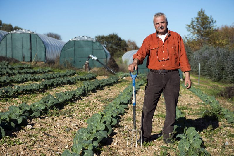 Οι καλύτερες αγροτουριστικές εξορμήσεις για κάθε εποχή!