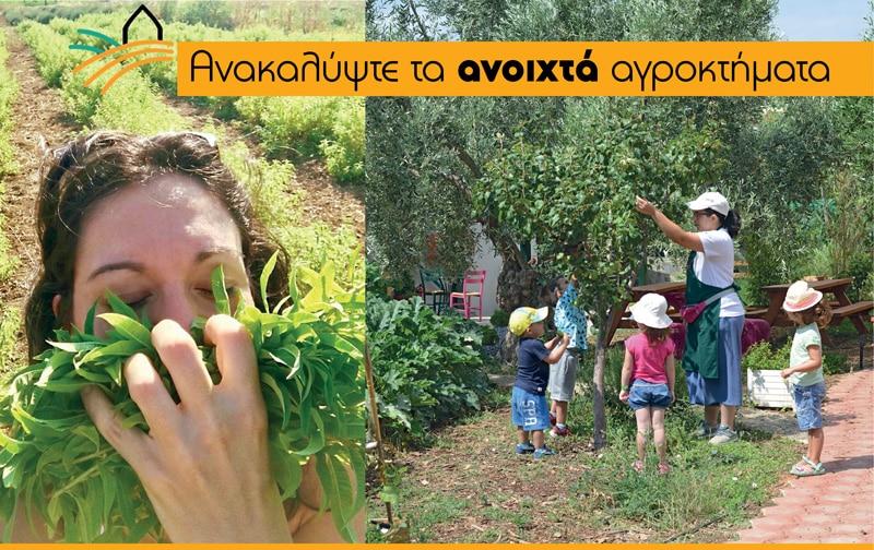 Οι καλύτερες αγροτουριστικές εξορμήσεις για κάθε εποχή!- Natura nrg
