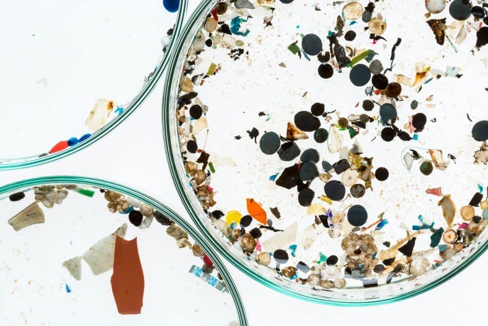 Τρώμε μικροπλαστικά. Τι αποκαλύπτει η πρώτη διεθνής έρευνα;