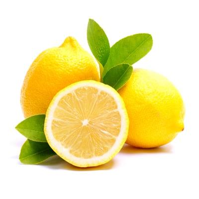 lemonia-kitrina