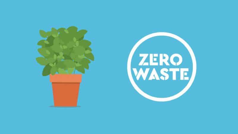 zero-waste-kampania-opa-fyto