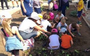 Κηπουρική για την οικογένεια στο πάρκο Σταύρος Νιάρχος- Ελεύθερη είσοδος