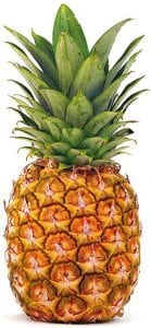 ananas-frouto