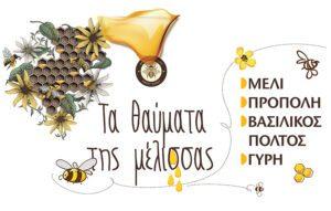 Τα θαύματα της μέλισσας: μέλι, πρόπολη, γύρη, βασιλικός πολτός