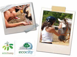 To Ecocity διοργανώνει και φέτος το ECOCAMP 2020