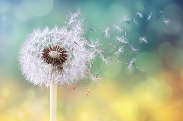 Αλλεργίες... Αντίδραση στις «αχώνευτες» τροφές, συναισθήματα, σκέψεις