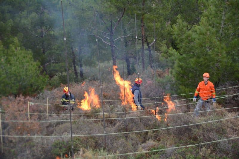 Χίος: Πρόληψη δασικών πυρκαγιών στην πράξη