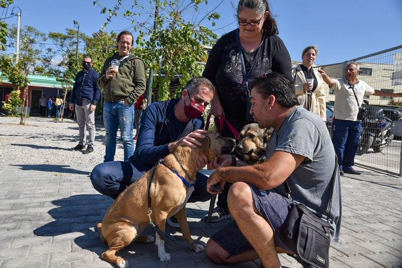 Δήμος Αθηναίων: Γιορτάζει την Παγκόσμια Ημέρα των Ζώων μαζί με τα αδέσποτα (video)